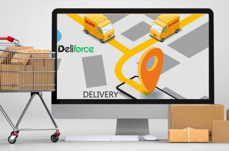 Parcel Delivery Software